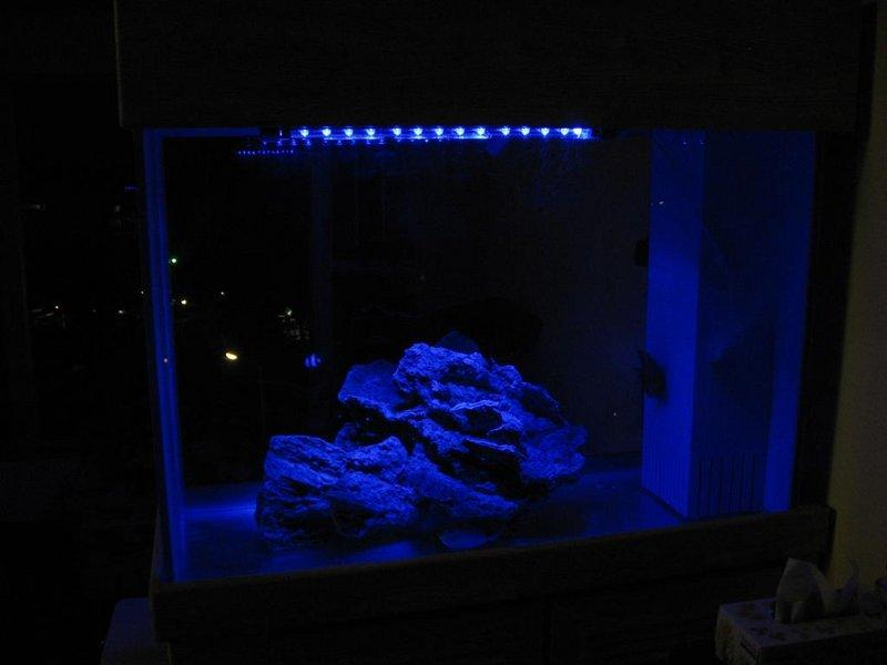 Blue Moon Led Aquarium