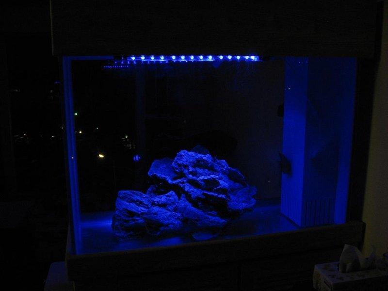 Moonlight & Blue Moon LED Aquarium