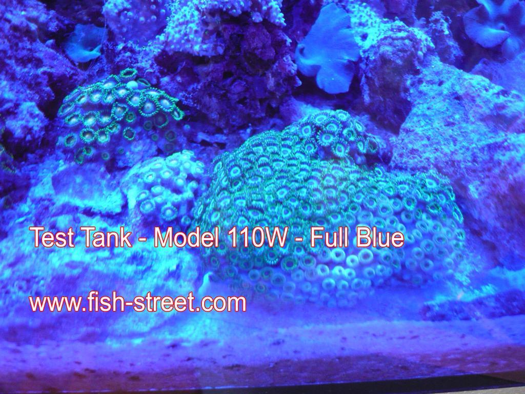 Maxspect Aquarium Programmable Led Lighting T5 Ballast Wiring Q The Reef Tank Full Blue
