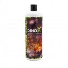 dinox_2.jpg