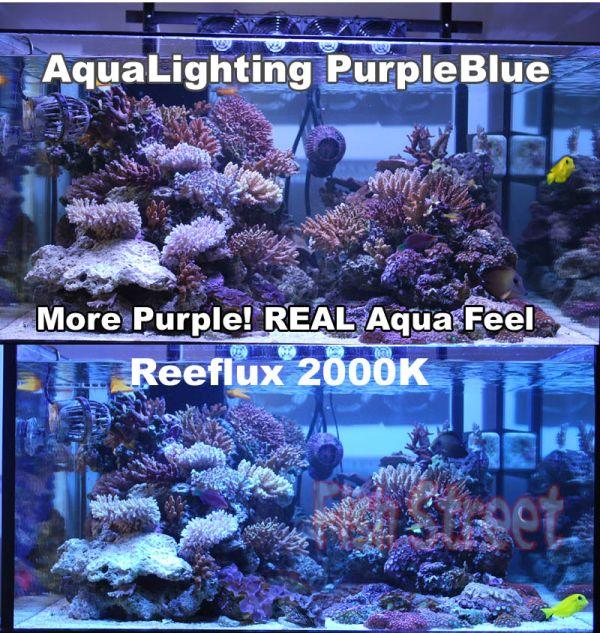 250W Purple Blue SE Metal Halide Bulb Reef Lamp