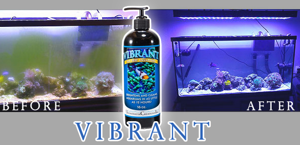 Vibrant Liquid Aquarium Cleaner for Reefs