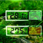 Transparent HD Temperature Thermometer