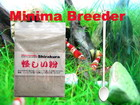 Minia breeder Shirakura Natural Foodfor CRS Shrimp (10g)